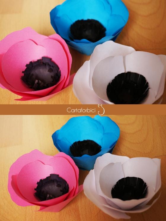 rainbow paper anemones